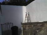 Painting rendered wall